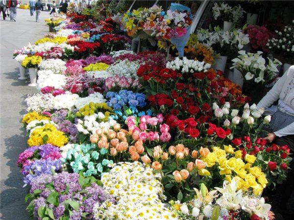 Mis kokulu çiçekleri ve hoş sohbetleriyle her köşe başını renklendiren, sempatik çiçekçileri
