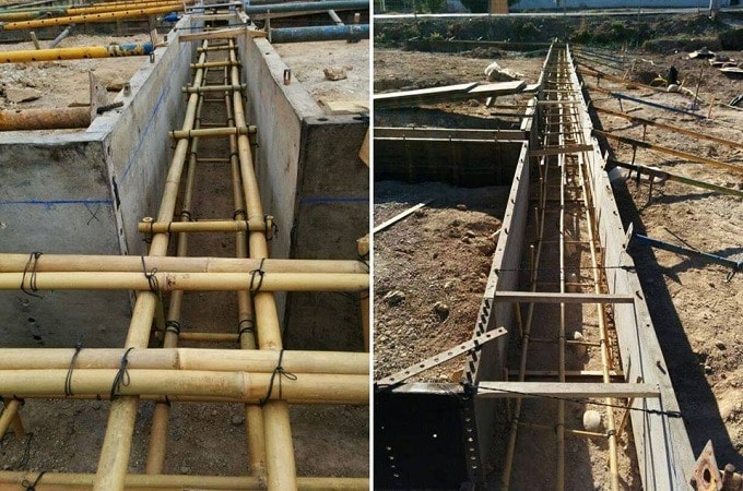 Çelikten Bile Daha Güçlü Bir Bitki ,.  Bambu Nedir?
